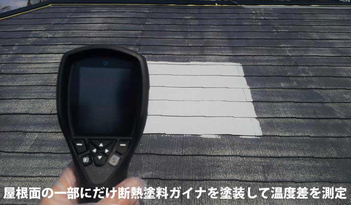 ガイナを屋根に塗布